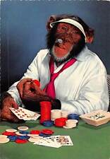 Chimpanzee Comic Monkey Smoke Cigar, Play Poker, Table Gambling Game