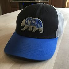 223ef9e8 Patagonia Grizzly Bear Heaven Roger That Snapback Hat, Blue Black Gray  Clean | eBay