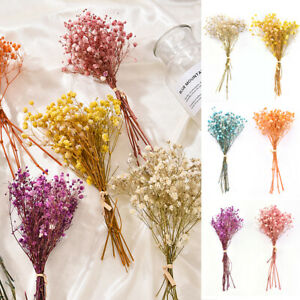 Mixed Real Dried Flower Rose Gypsophila Flowers Bouquet Wedding Party Home Decor