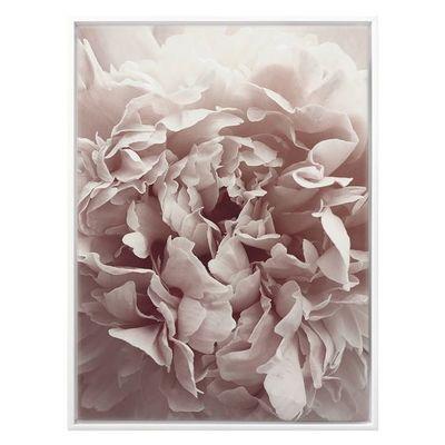 Petalling Framed Canvas Print