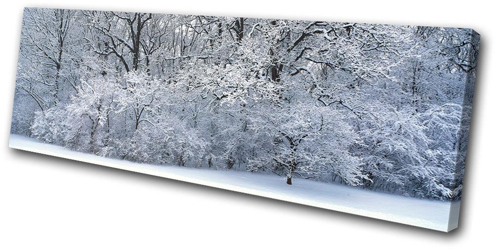 Landscapes Snowy Forest SINGLE TELA parete arte foto foto foto stampa beb010