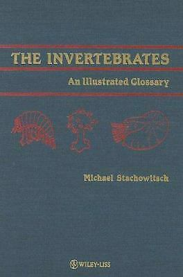Invertebrates : An Illustrated Glossary Hardcover Michael Stachowitsch