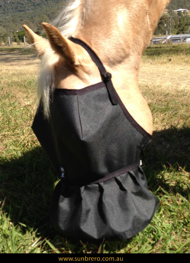 SUNBRERO Horse Sun & Fly Mask/Veil w/- SolarShield® Nose Cover - 95% shade.