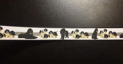 1019 Podenco 22mm Breite Eigenproduktion Ripsband Borte Webband