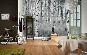 Wall Mural Photo Wallpaper 368x248cm Black White Forest Bedroom Living Room Ebay