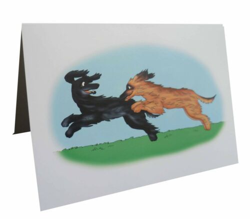 10 per pack Afghan Hound notecards