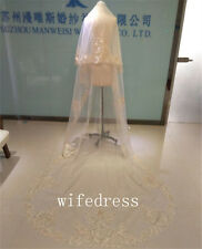 New Real Picture Champagne Bridal Wedding Veils Lace Applique Free Comb Custom