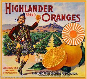 Highland San Bernardino Pine Cone Orange Citrus Fruit Crate Label Art Print