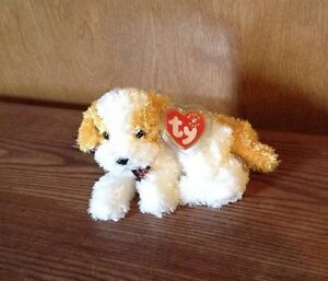 Ty Beanie Baby Darling The Puppy Dog White Tan 2000 2001