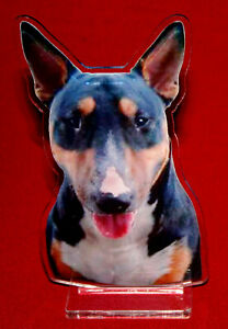 statuette-photosculptee-10x15-cm-chien-bull-terrier-5-dog-hund-perro-cane