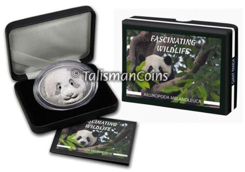 Fiji 2013 Fascinating Wildlife Giant Panda Bear $10 1 Oz Silver Oval w Onyx Eyes