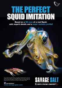 SAVAGE-GEAR-NEW-3D-SWIM-SQUID-LURES-READY-TO-FISH-CRAZY-PRICE