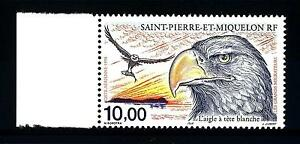 ST-PIERRE-E-MIQUELON-PA-1998-Gli-uccelli-migratori-Aquila-testa-bianca