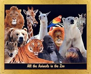Zoo-Animal-Collage-Kids-Room-Wall-Decor-Golden-Framed-Picture-Art-Print-18x22
