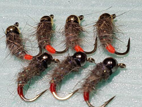 7 PROIETTILI al tungsteno River Taglia 12 Grayling//Trote FORMICHE//ninfe//mosche SPEDIZIONE GRATUITA