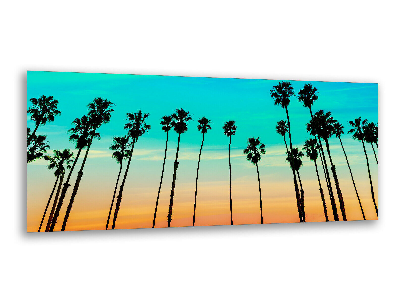 Photos de peintures murales 125 x 50 cm Palm Beach USA ag312502739