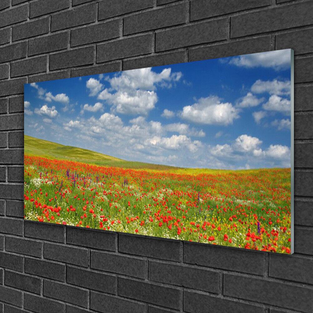 Image sur verre Tableau Impression 100x50 Paysage Fleurs Prairie
