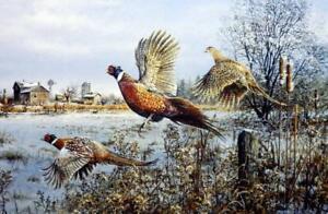 Scott Zoellick-SPRING THAW S//N Duck Hunting Print