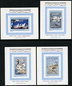 Mauretanien-1994-Voegel-Moewe-Alpenstrandlaeufer-1025-1027-Blocksatz-MNH-576-RAR