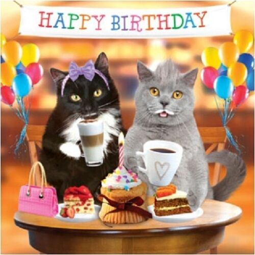 3d Holographic Birthday Card Funny Cute Cats Kittens Couple Cakes Balloons For Sale Online