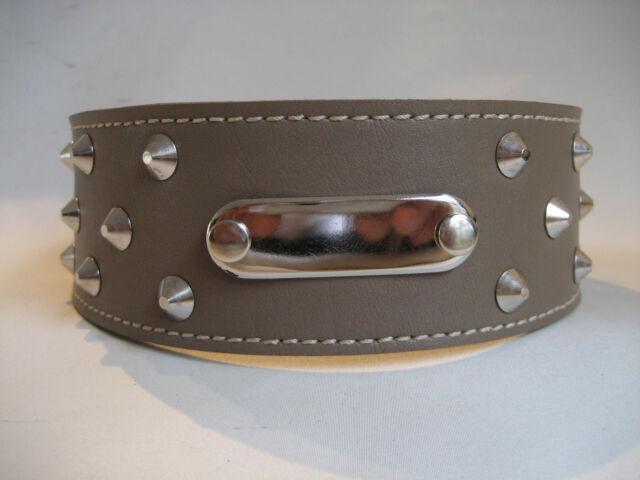 LEATHER STUDDED ID TAUPE STAFFY  DOG COLLAR