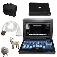 Vet Veterinary Ultrasound Scanner Portable Laptop Machine Digital Probe Convex