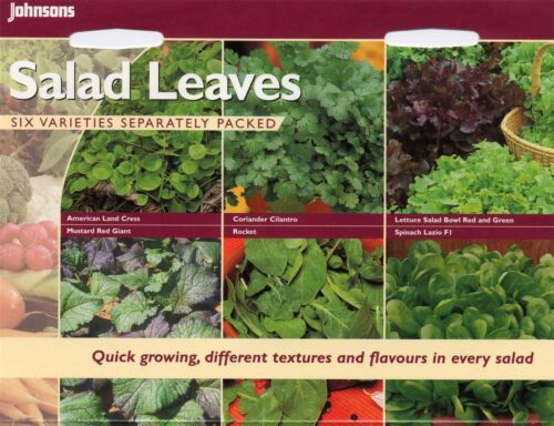 Bildhafte Packung Salat Blätter Sammlung Johnsons Samen Gemüse