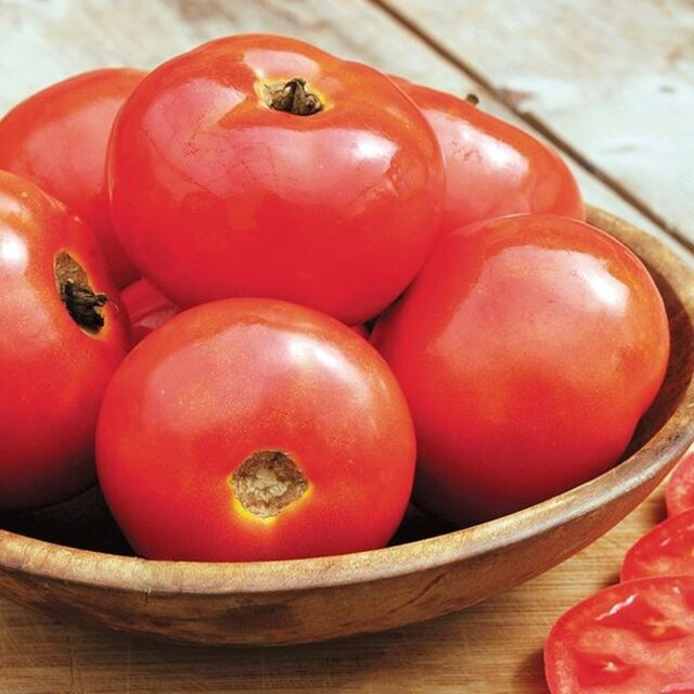 heavy yields of ¾ to 1 oz orange cherry tomatoes!! Sungold Select Tomato Seeds