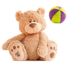 EVA Buddy Ball Teddy Bear with Secret Compartment that converts into a Ball