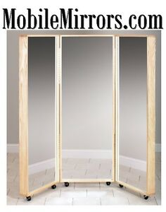 Mobile Mirrors .com Deliver closet Dance Floor Event Domain Name  Sale URL Brand