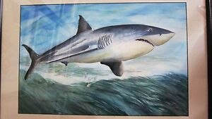 Shark-Approach-Original-15-x-22-in-Watercolor-painting-Roxanne-Tobaison