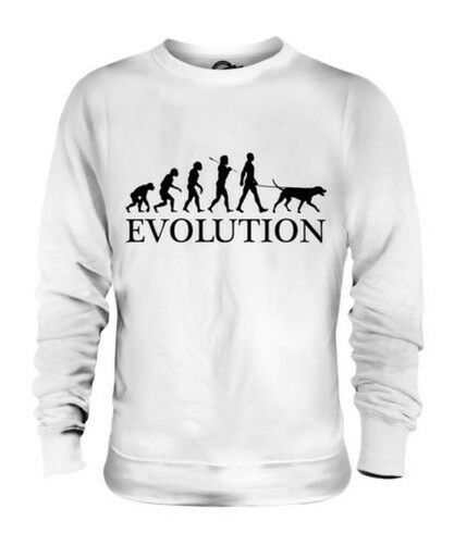DALMATIAN EVOLUTION OF MAN UNISEX SWEATER  Herren Damenschuhe LADIES DOG LOVER GIFT