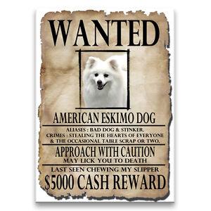 AMERICAN-ESKIMO-DOG-Wanted-Poster-FRIDGE-MAGNET-New-DOG