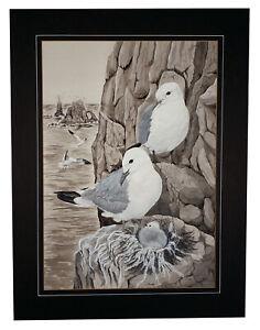 JAMES-AYNSLEY-ORIGINAL-ART-BLACK-BILLED-GULLS-WILDLIFE-BIRDS-WATERCOLOR-PAINTING