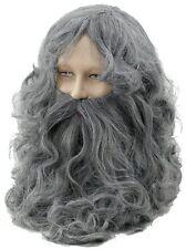Grey Wizard Wig & Beard Set Grey Gandalf Fancy Dress Mens Adult P5473