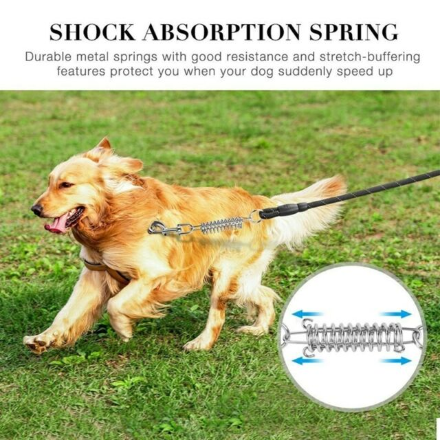 Dog Leash Reflective Comfort pet Lead spring Explosion-proof Round Rope Nyl C7R4