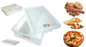 Cassetta-impasto-contenitore-service-per-palline-pizza-pane-varie-misure-novita