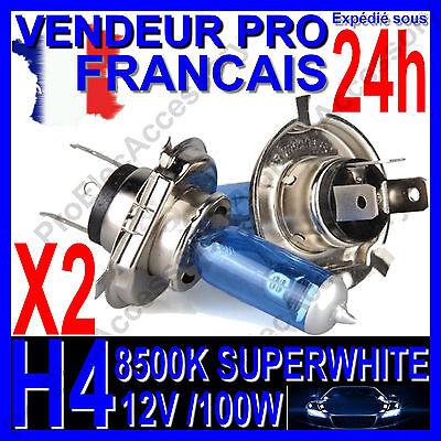 806 Ampoule H7 Feu Route Croisement 12V 55W Culot PX26D pour Renault Scenic