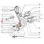 TENDICINGHIA-FIAT-131-132-DUCATO-ORIGINALE-99461358 miniatura 2