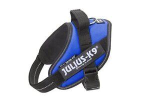 Julius-k9 16idc-b-m Bâts Taille Mini Bleu