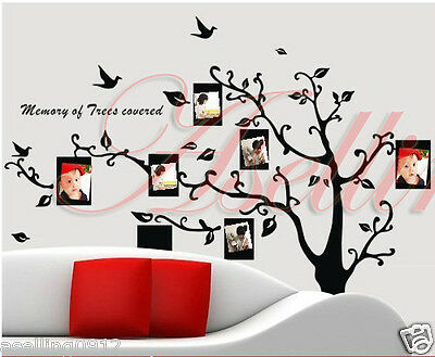 Photo Frames Tree Large DIY Removable Art Vinyl Wall Sticker Decor Mural Decal