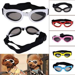 De-Moda-Bonito-Pequeno-Mascota-Perro-Gafas-UV-sol-OJO-PROTECCIoN-DESGASTE