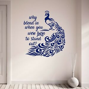 Image Is Loading Peacock Wall Decal Why Blend In Inspirational Art