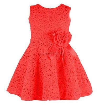 Fashion Kids Girls Toddler Baby Lace Princess Party Dresses Skirt Clothes 2-7Y