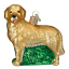 Old-World-Christmas-GOLDEN-RETRIEVER-dog-12203-N-Glass-Ornament-w-OWC-Box thumbnail 1