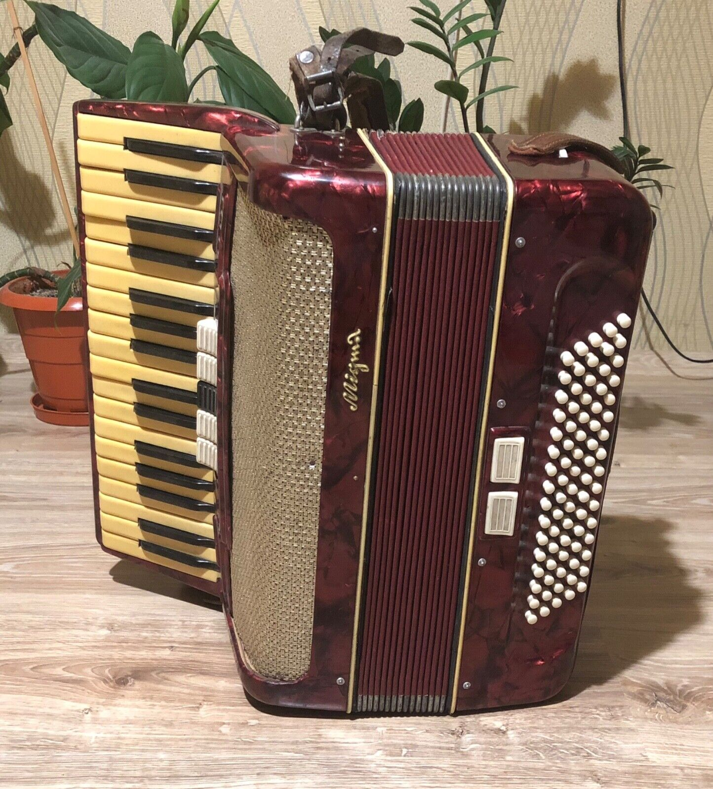 Vintage German Accordeon Migma 80 Bass 7 Register