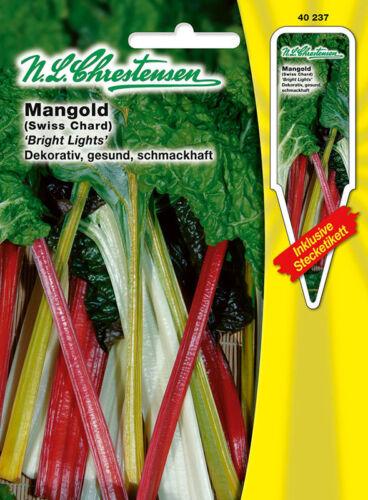 40237 Mangold /'Bright Lights/' bunt  Saatgut  Saatgut