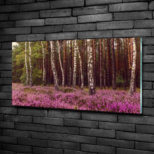 Glas-Bild Wandbilder Druck auf Glas 100x50 Deko Landschaften Heide