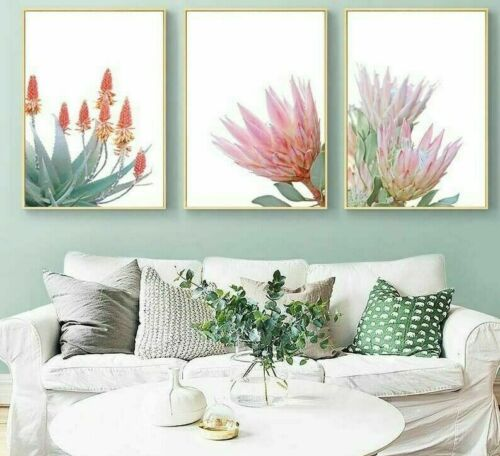 Green Leaf Poster Succulents Wall Art Decoration Prints Picture For Living Rooms