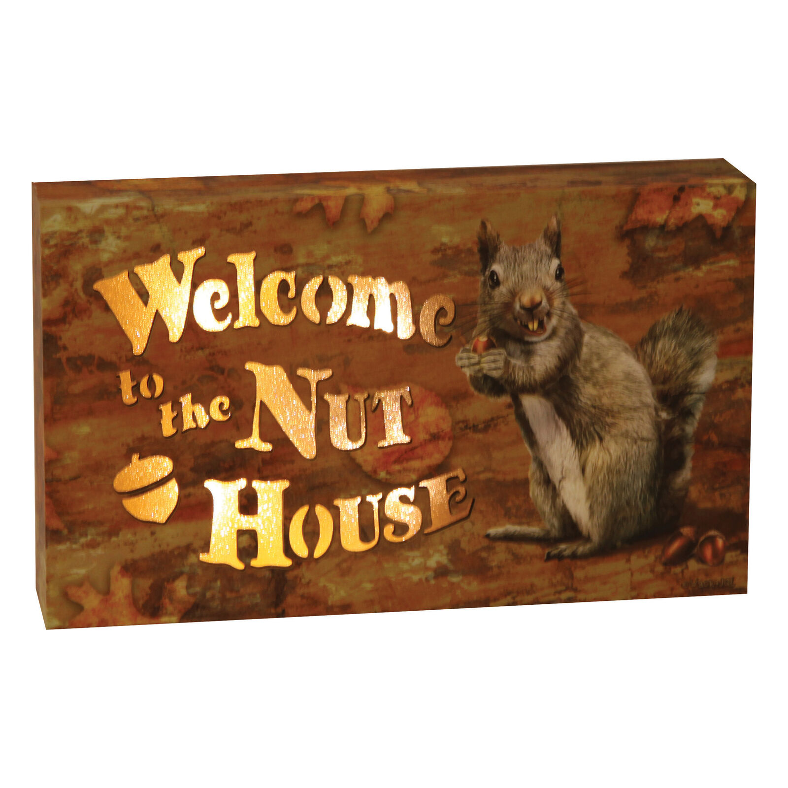 LED Box 8in x 5in - Nut House